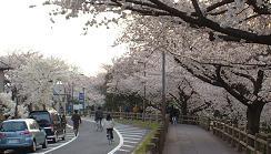 20060402_mizumotodouro