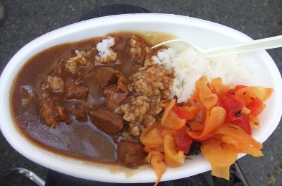 20091019_a_inosisi_curry