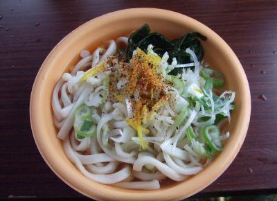 20091204_udon