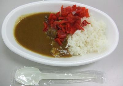 20091206_curry