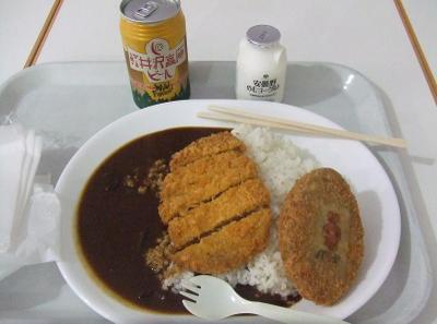 20100212_curry