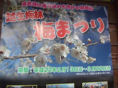 20100302_poster