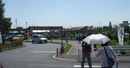 20100909_ajisai_center