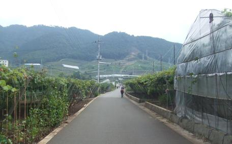 20100930_road06