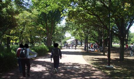20101002_musashino_chuo_park