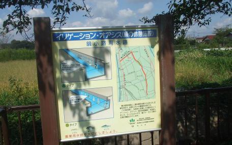 20101009_nabekouji_yousuiro