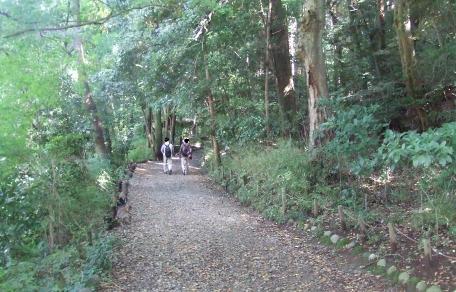 20101016_yuhodou