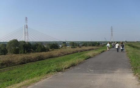 20101113_arakawa4