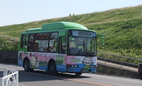 20101113_toco_bus