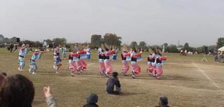 20101114_awaodori