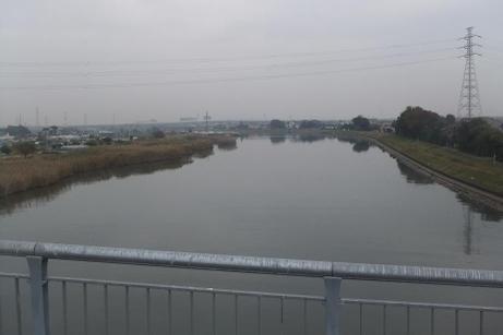 20101115_shin_nakagawa_bashi7