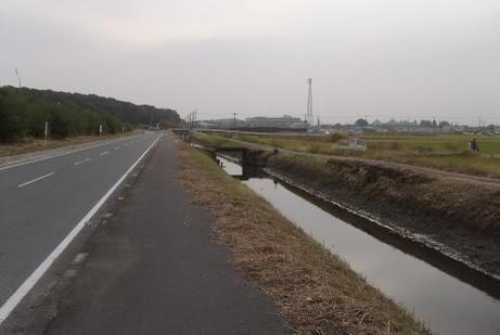 20101118_road1