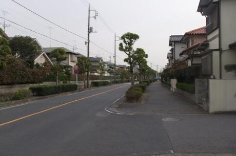 20101118_road5