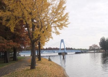 20101123_mizumoto_park1