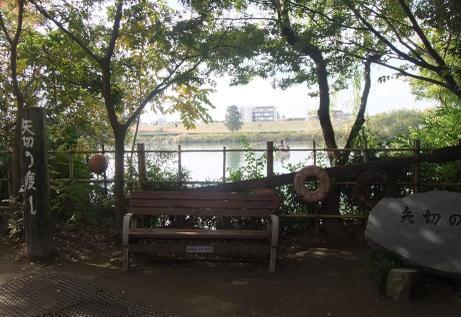 20101124_yagirinowatashi1