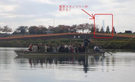 20101124_yagirinowatashi5