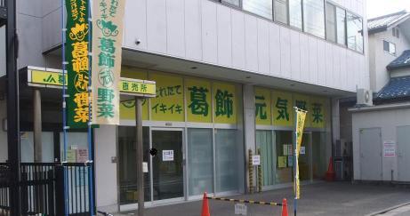 20101126_genki_yasai