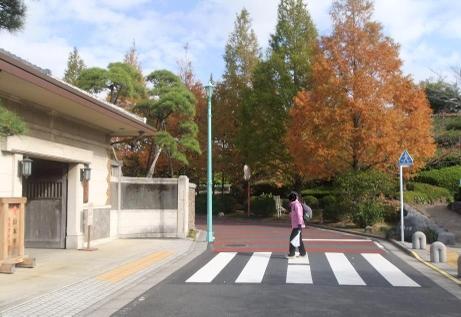 20101126_yamamototei
