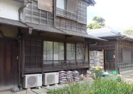 20101126_yamamototei2