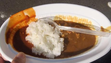 20101129_curry