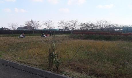 20101202_syukakusai04