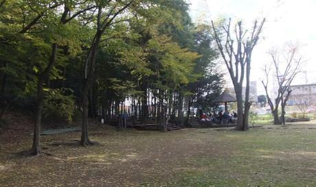 20101204_park