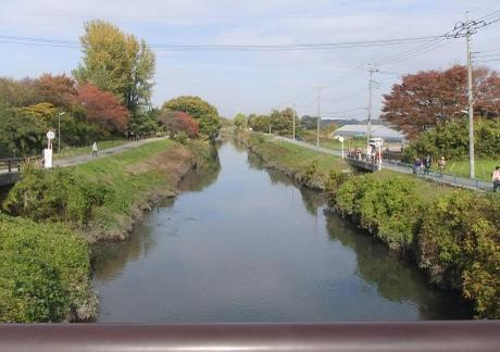 20101204_shiba_river2