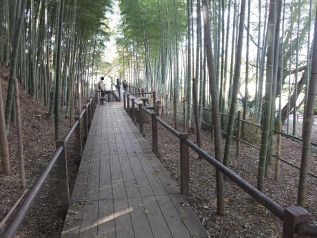 20101204_takeyabu2
