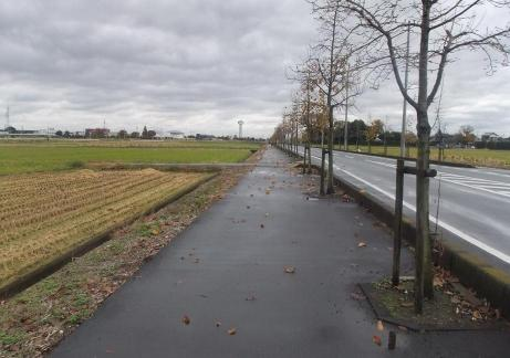 20101210_road1