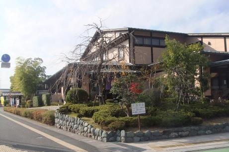 20101211_nagomi