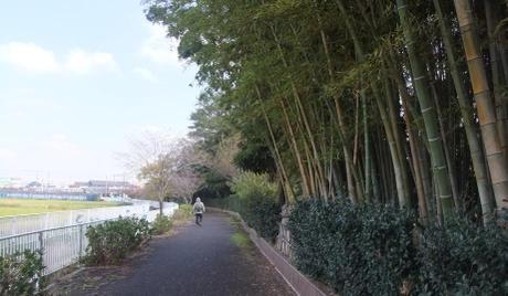 20101211_road5
