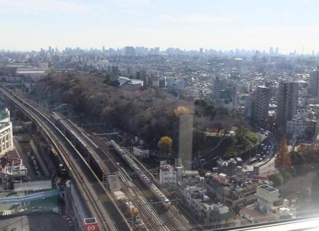 20101215_nagame1