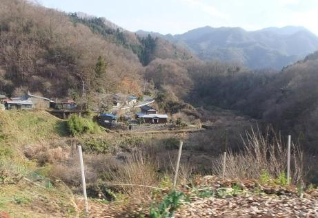20101222_road1