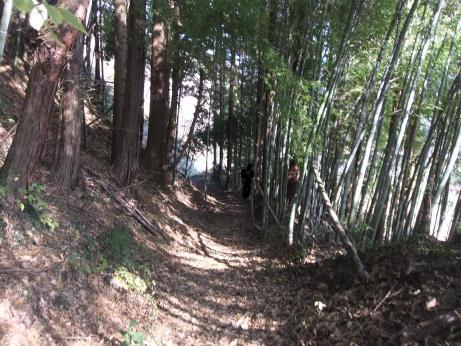 20101222_yama_road4