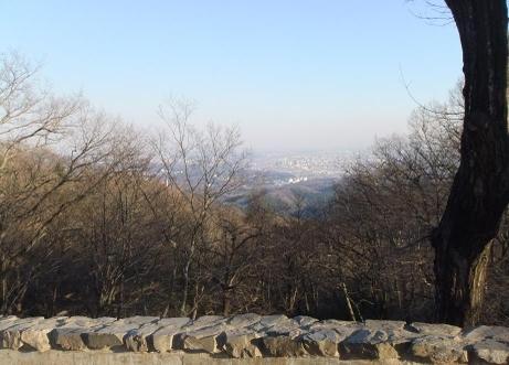 20101226_nagame3