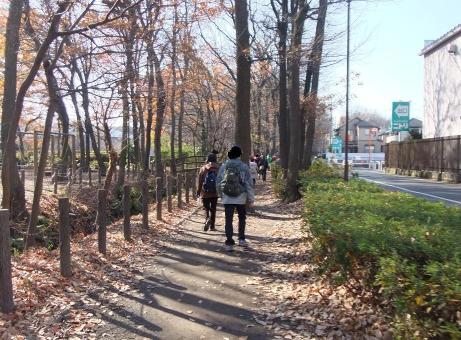 20101227_nobidomeyousui1