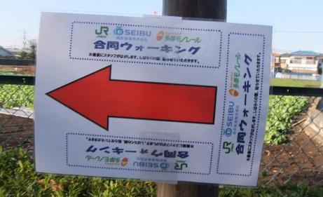 20101227_yajirushi