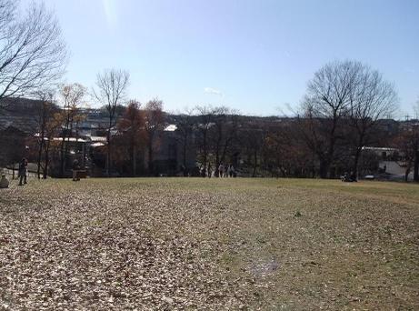 20101228_hakkokusan07