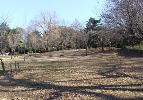 20101229_taiyounohiroba