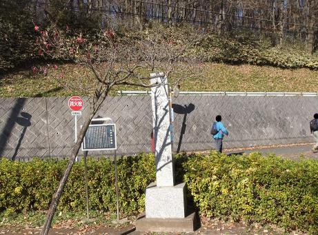 20101230_kumegawakosenjyou
