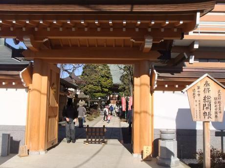 20101230_tokuzouji