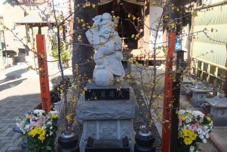 20110111_jyouryuji_daikokusonten2