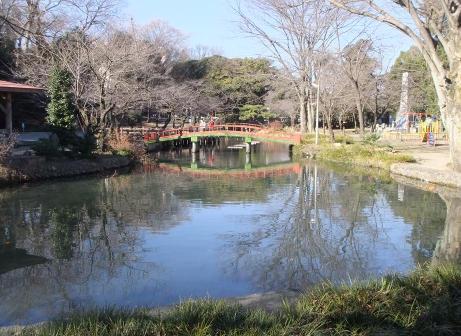 20110115_wakaizumi_park