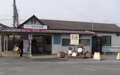 20110123_morinjimae_st