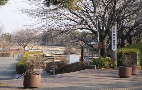 20110123_hanasyoubuen