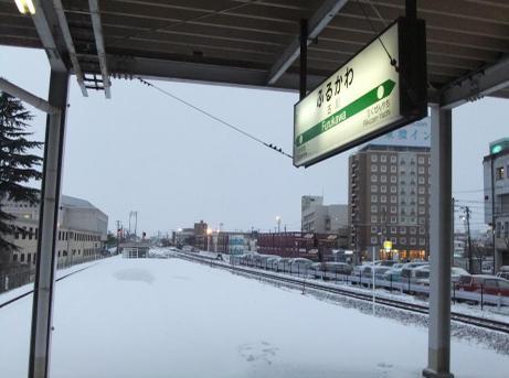 20110129_furukawa_st5