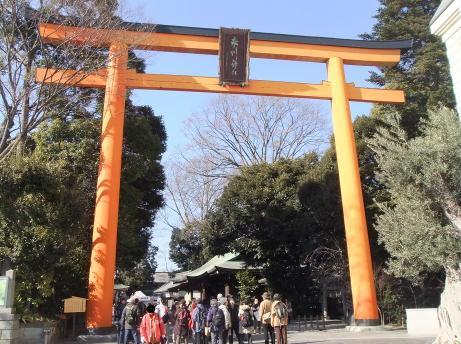 20110131_hikawa_jinjya_torii