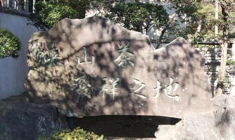 20110206_sayamacha