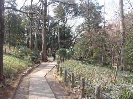 20110211_park4