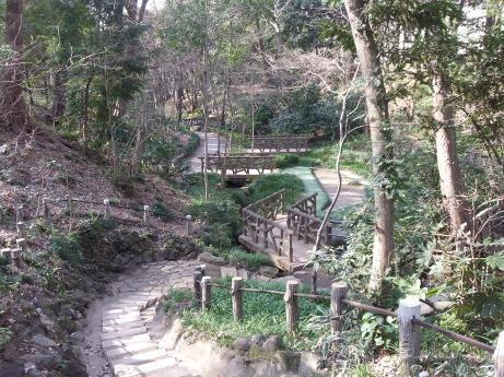 20110214_arisugawamiya_kinenpark